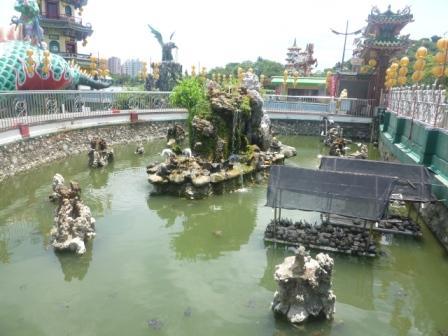 春秋閣亀の池