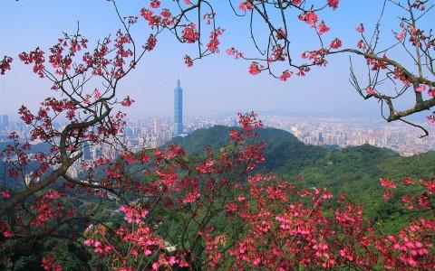 台北101-3