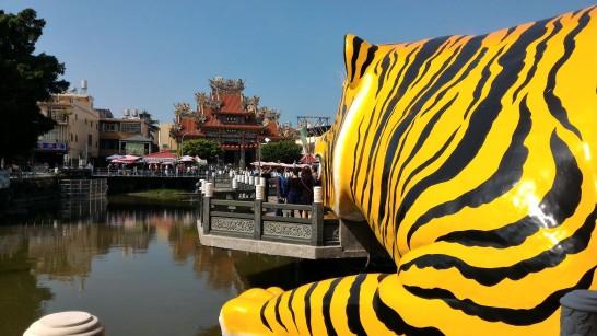 虎の横から正面を見る