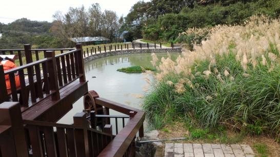 樟樹歩道 彩雲亭横の池