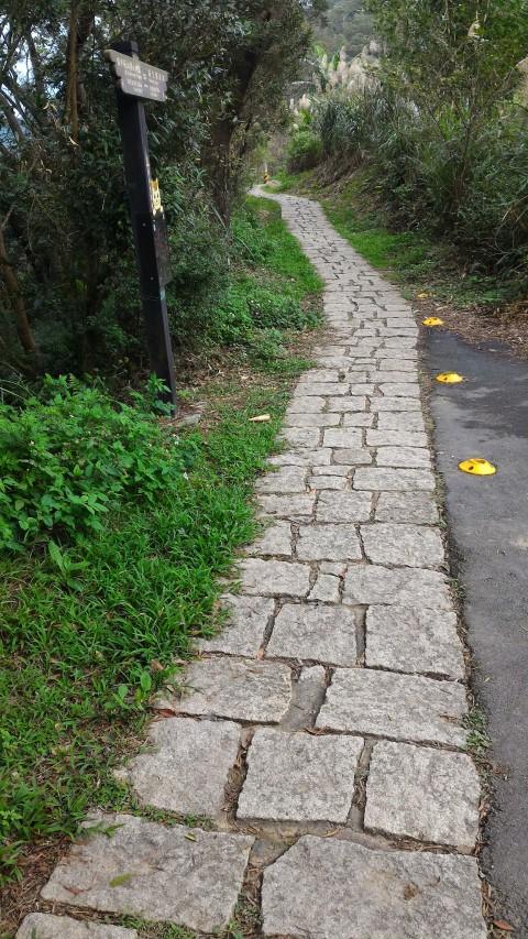 樟湖步道 歩きやすいところ