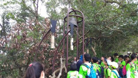 樟湖步道 小学校の遠足