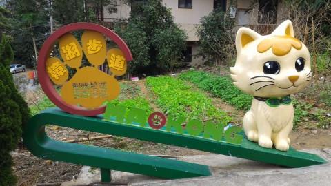 樟湖步道と猫