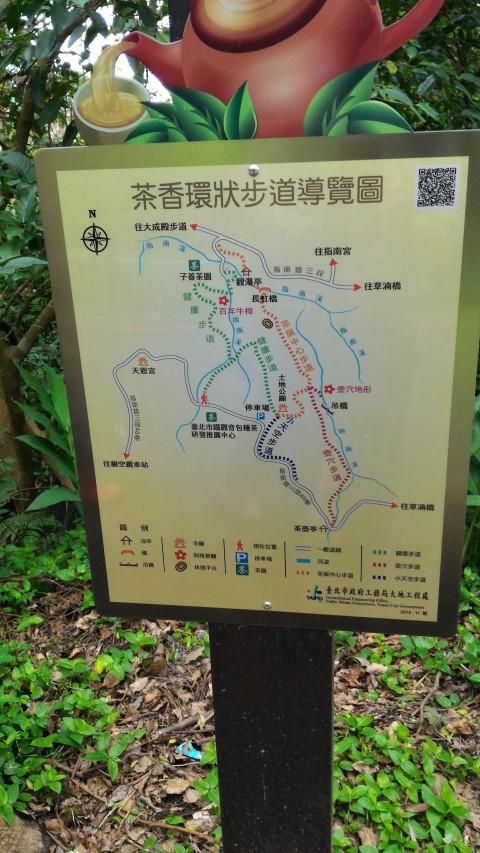 猫空散歩道又はハイキングコース