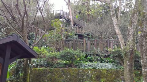 台北市鉄観音包種茶研発推廣中心裏の敷地