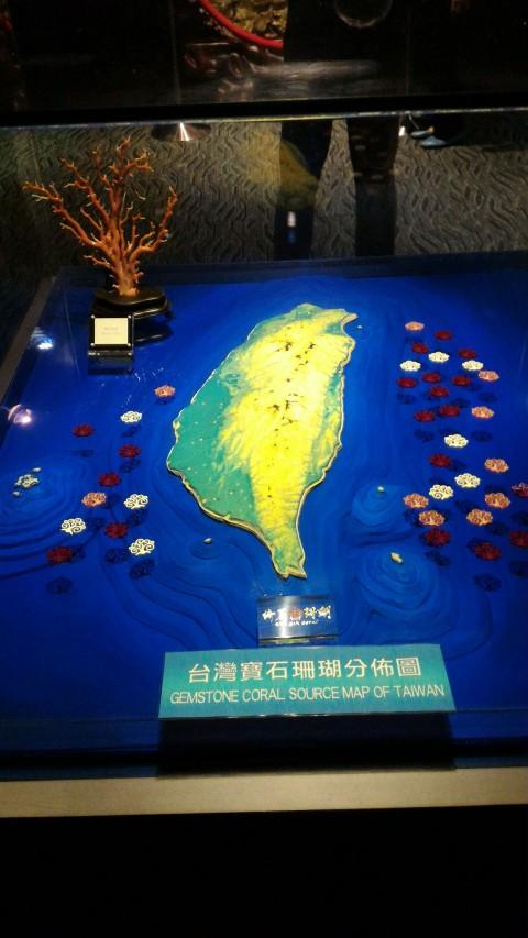 台北101 88階 珊瑚分布図