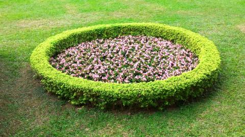 紅毛城と領事館間の庭