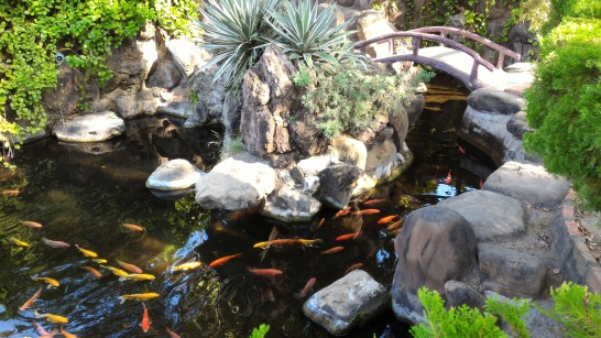 赤崁楼前庭の池