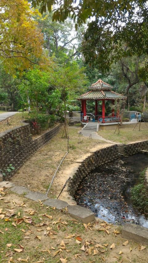 嘉義公園10