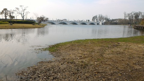 オリンポス橋遠景