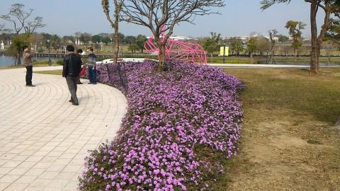 ミューズ広場横のお花