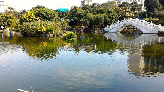 中正紀念堂の庭3