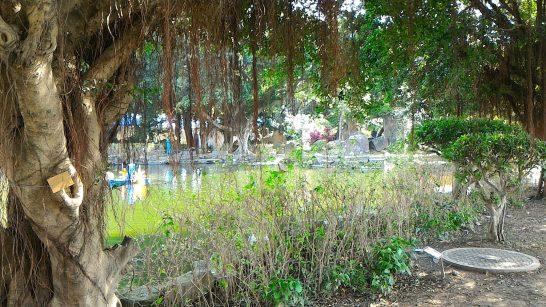 中正紀念堂の庭2