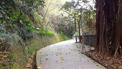 圓山風景区10