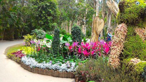 士林官邸公園花園2