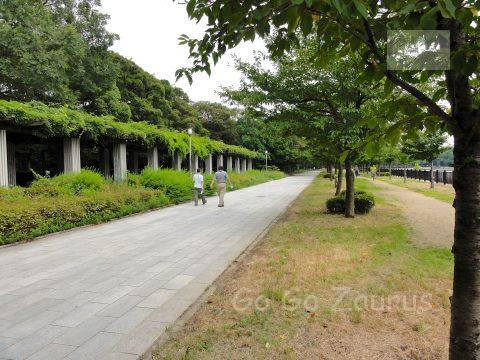 記念樹の森2