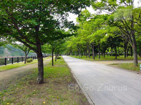 記念樹の森