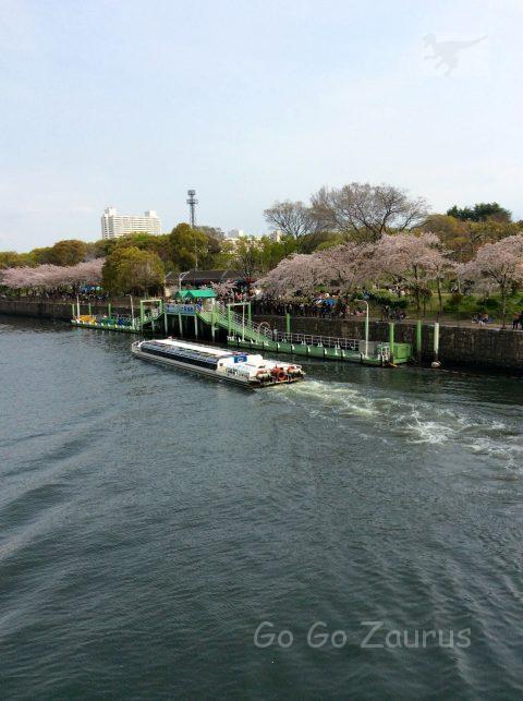 大阪城ホール前の水上バス発着場と桜