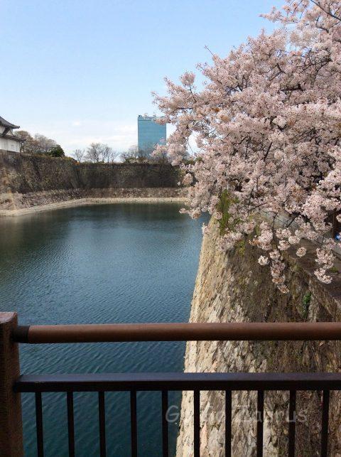 桜と一番櫓