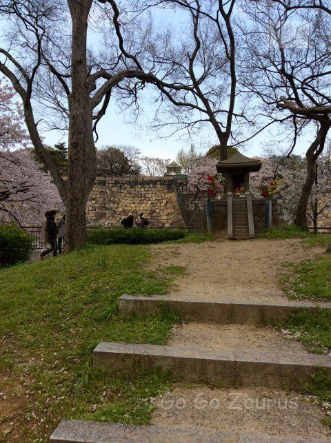 城南地区の桜と石垣