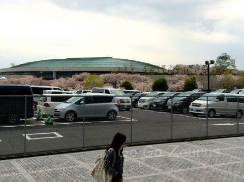 OBPから桜と大阪城ホールと天守閣