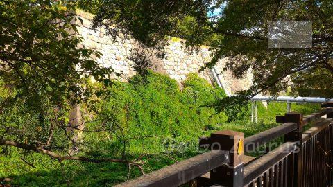 西の丸庭園から本丸石垣