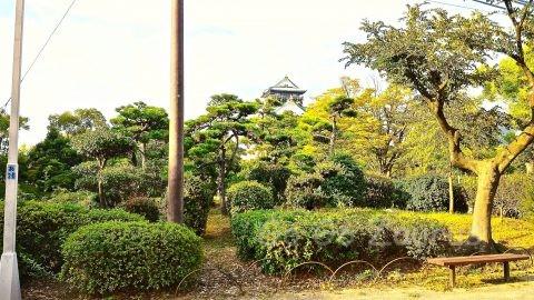 大阪城 天守閣を借景とした日本庭園