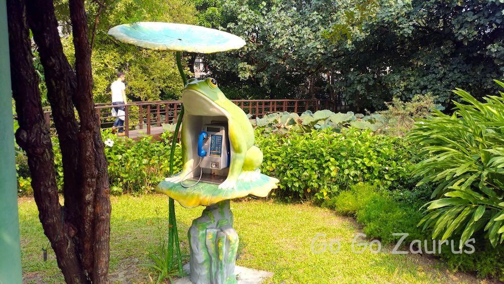 カエル電話と蓮池