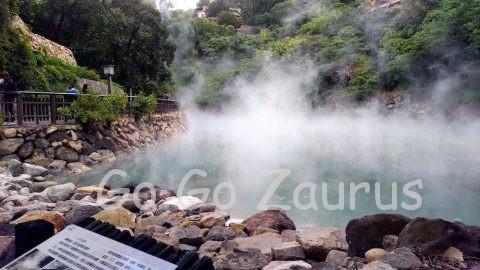 山の緑と湯煙の調和