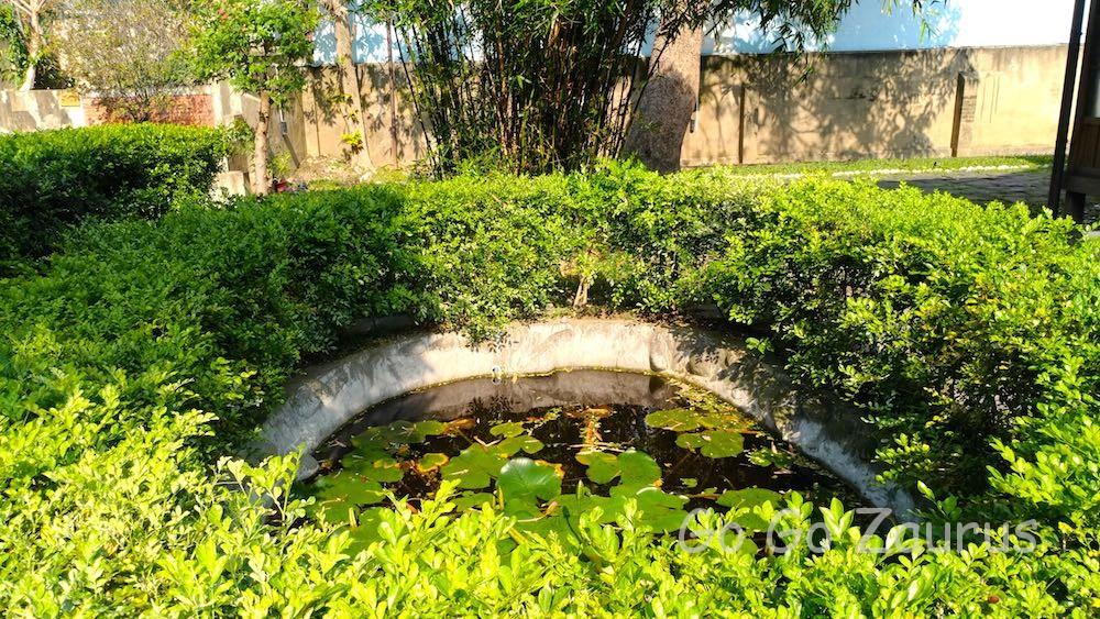 間にある蓮の池