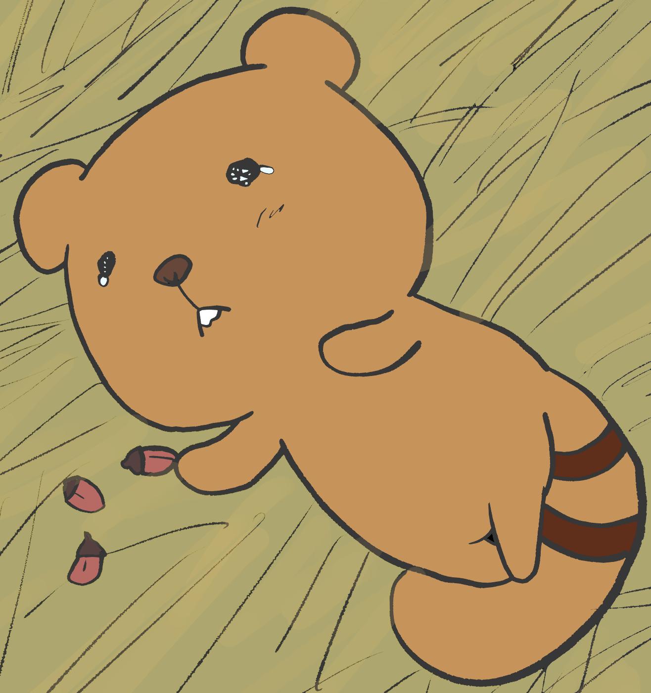アライグマさんの孤独