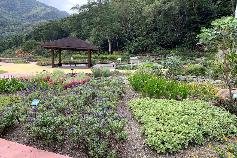サービスセンター裏の庭