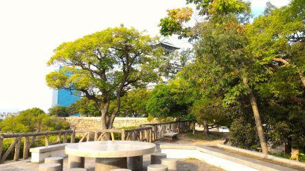 大阪城本丸西側石垣上