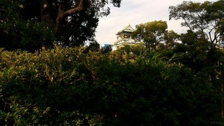 大阪城 木々の向こうに天守閣