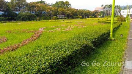 花博公園22