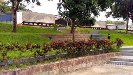 花博公園19
